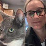 Alacia cat pet sitter