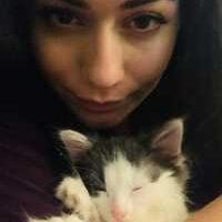 Sherenai cat sitter